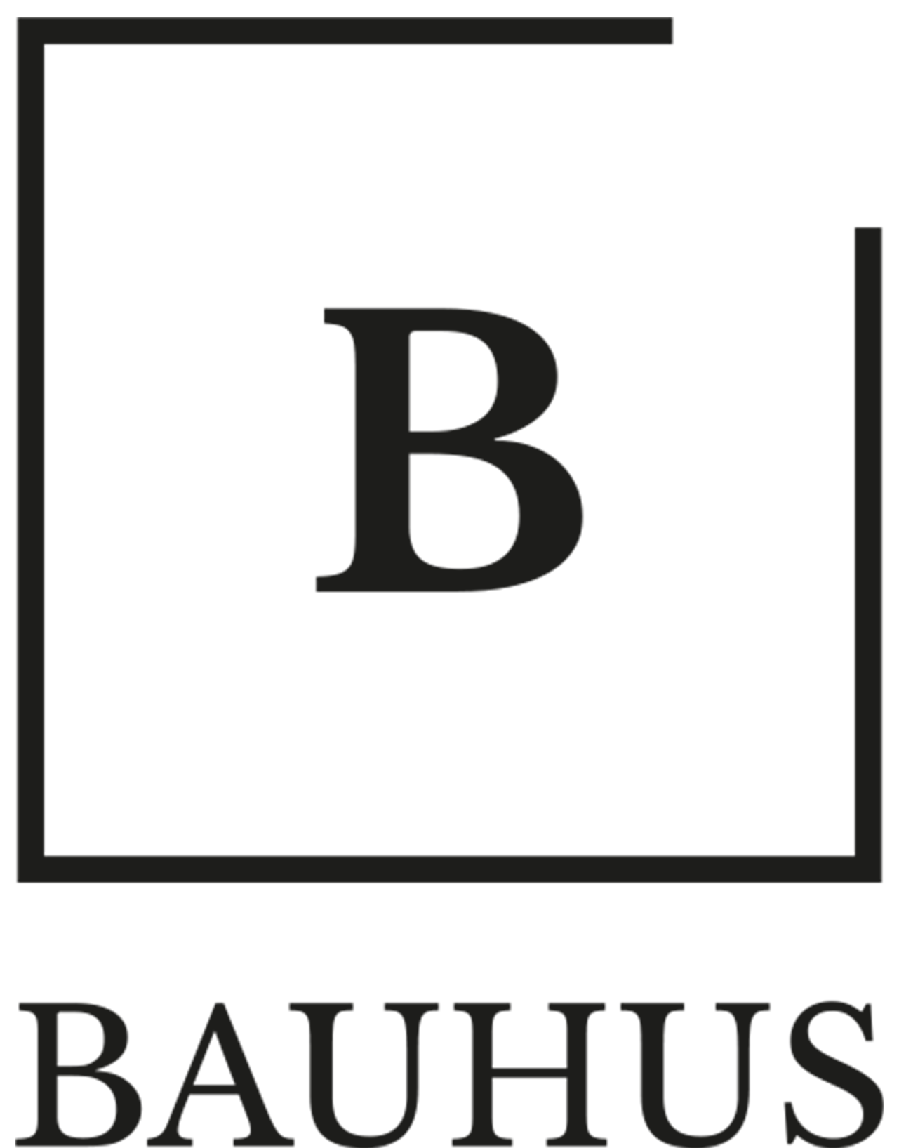 Producent Bauhus - Profesjonlna Chemia Budowlana